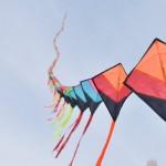 Glimpses of Kerala Kite Festival 2011