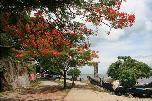 Fort kochi beach to be renovated cochinsquare - Chambr kochi ...