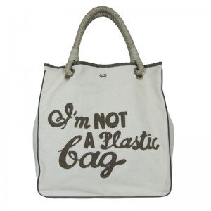 ban on plastic bags in cochin